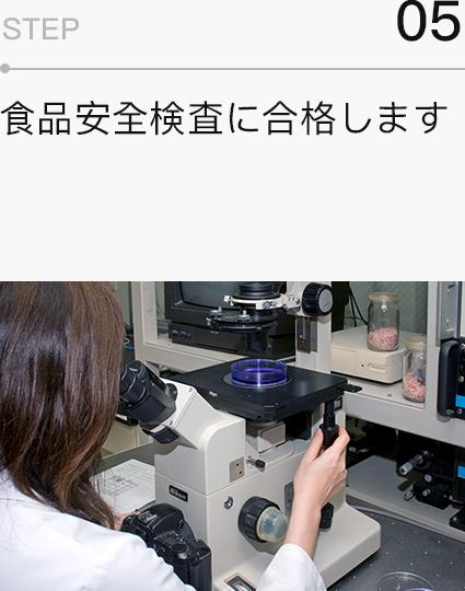 manufacture-step5